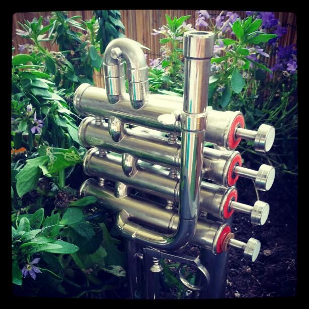 Schrott aus Indien macht sich nett als Dekoration. #trumpet #trompete